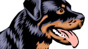 Adopt Rottweilers